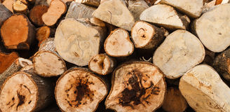 Firewood background. Royalty Free Stock Image