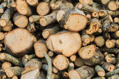 Firewood background. Royalty Free Stock Images