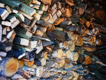 Dry firewood of various species lying in the room. On which is visible the structure of a tree, sprinkled with sawdust, shades of gray and beige colors. the stock images