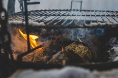 Firewood Below Grill Royalty Free Stock Photography