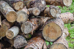 Firewood. Big pile of conifers firewood Stock Images