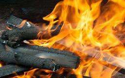 Firewood in bonfire Stock Photo