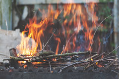 Firewood and branches for coals burn out in the brazier. Retro v Stock Photos