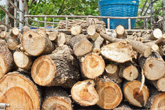 Firewood. Branches were cut for firewood arranged on a pickup truck Royalty Free Stock Photos