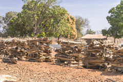 Firewood in bundles. Used in a village in the Gambia  firewood in bundles, Africa Royalty Free Stock Image