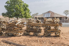 Firewood in bundles. Used in a village in the Gambia  firewood in bundles, Africa Royalty Free Stock Photography