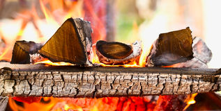 Firewood burning in the brazier Stock Photography