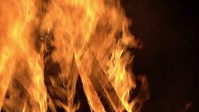 Firewood Burning. In the dark stock video