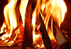 Firewood burning in fire. Close up of firewood burning in fire Stock Photo