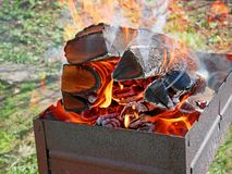 Firewood burning in metal tray Stock Photography