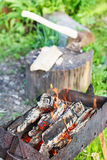 Firewood burning in old brazier Royalty Free Stock Photos