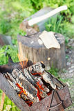 Firewood burning in outdoor brazier Royalty Free Stock Photography
