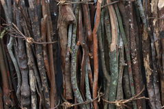 Firewood. Can be burned to provide heat twigs, straw, weeds etc Royalty Free Stock Images