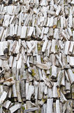firewood, close-up Stock Image