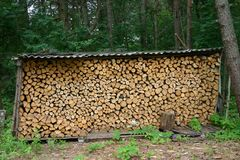 Firewood combined under a roof Stock Photo