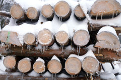 Firewood covered in snow and icicles Stock Photography