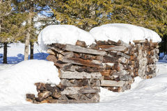 Firewood covered by snow in winter Royalty Free Stock Images