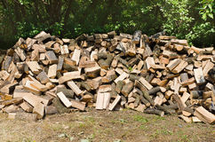 Firewood on crowd. In forest and prepair for winter Stock Photos