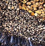 Firewood. Of different sizes, stacked, and ready to burn Royalty Free Stock Photos