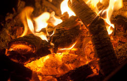 Firewood in fire. Burning hot orange firewood in fire burn Stock Images