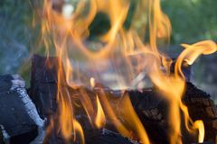 Firewood in fire flames. Background. Flaming firewood. Green grass in background. Close up. Outdoor recreation. Barbecue cooking stock photos