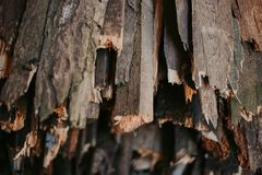 Firewood, for fire, stacked in a flat pile. wall firewood stock photos