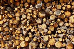 Firewood fire wook pattern texture Stock Photography