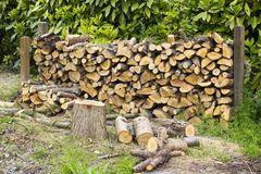 Firewood in the garden Royalty Free Stock Photo