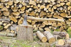 Firewood in the garden Royalty Free Stock Image