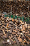 Firewood harvested in winter Stock Photos