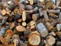 Firewood at home Stock Photos