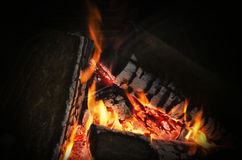 Firewood Hot Fair in Night Stock Images