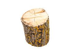 Firewood isolated Royalty Free Stock Photos