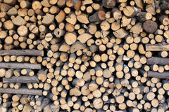 The firewood Royalty Free Stock Photography