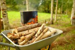 Firewood lies in a wheelbarrow, ready for a fire Royalty Free Stock Image