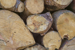 Firewood,log Stock Photo