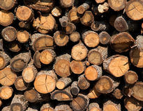 Firewood logs Royalty Free Stock Images