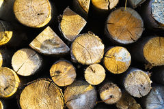 Firewood logs Royalty Free Stock Photography