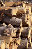 Firewood. Logs cut in stacked for firewood Stock Image
