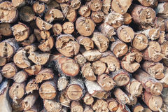 Firewood logs Royalty Free Stock Photos