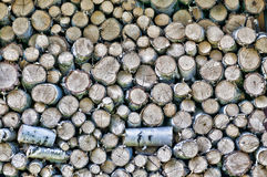 Firewood logs Royalty Free Stock Image