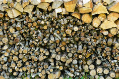 Firewood logs stacked up in a pile Royalty Free Stock Photography