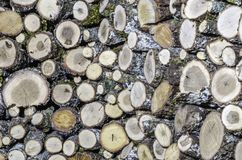 Firewood logs stacked up on top of each other in a pile Royalty Free Stock Image