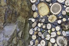 Firewood logs stacked up on top of each other in a pile Royalty Free Stock Photo