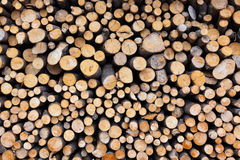 Firewood logs wood background Stock Photos
