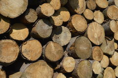 Firewood. A lot of prepared firewood pieces for cold days Royalty Free Stock Photo
