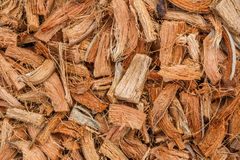 Firewood, made ​​from coconut husk. Firewood, made ​​from coconut husk, commonly seen in countryside of Thailand royalty free stock image
