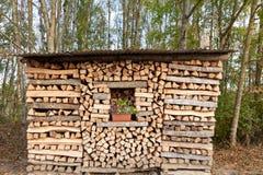 firewood Madeira combustível naughty cru imagens de stock royalty free
