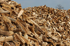 Firewood Mountain Stock Photo