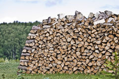 Firewood in Nature - Wood Stock Photography